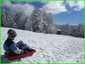 EXCURSION NIEVE COLEGIOS