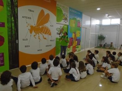 la miel en turis explora excursiones colegios (22)